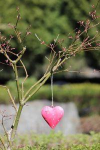 כמה סוגי אהבה